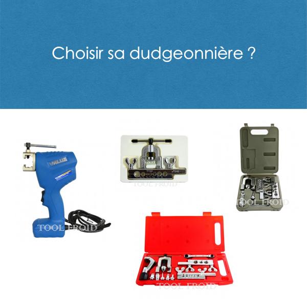 Dudgeonnières frigoriste